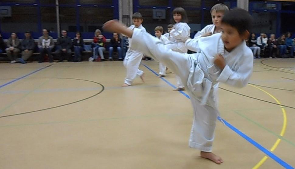 Karate Kampfsportschule Aarau